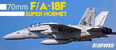 FMS 875MM F/A-18F HORNET 70MM EDF JET