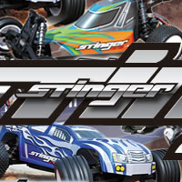 New - Step Up Stinger 1/10th Electric Buggy and Truggy