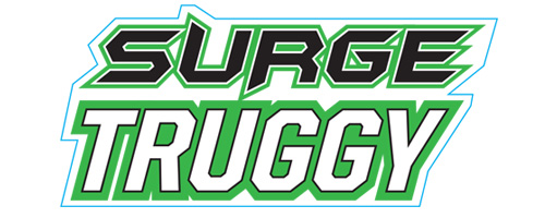 FTX SURGE 1/12 BRUSHED TRUGGY READY-TO-RUN (GREEN) LOGO