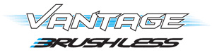 FTX VANTAGE 1/10 BRUSHLESS BUGGY 4WD RTR W/LIPO & CHARGER LOGO